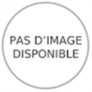 CHARIOT - 2 plateaux bois