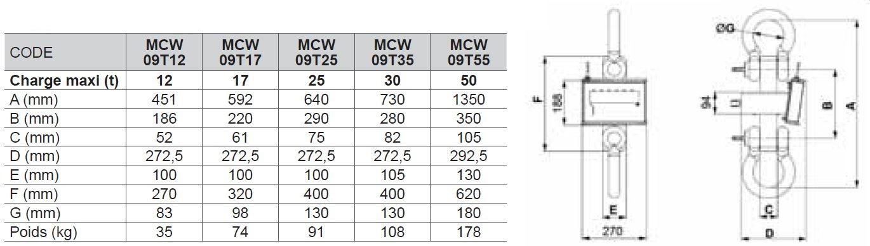 Dynamomètre à affichage digital FORTES CHARGES